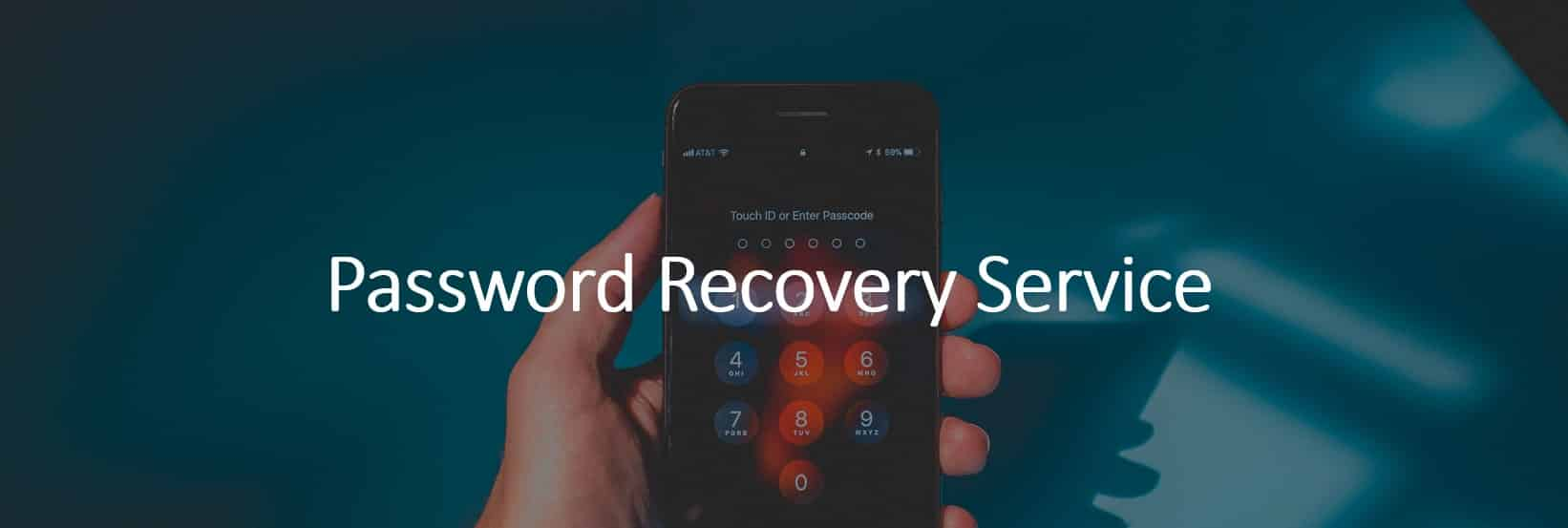 Password Recovery Service